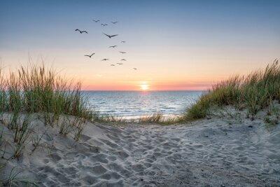Carta da parati Sand dunes on the beach at sunset