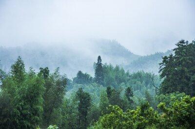 Carta da parati scenario di montagne sotto la pioggia e nebbia