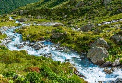 Carta da parati Scenic fiume alpino