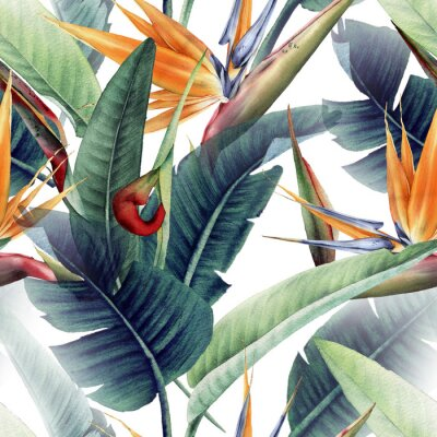 Carta da parati Seamless floral pattern with tropical leaves and strelitzia on light background. Template design for textiles, interior, clothes, wallpaper. Watercolor illustration