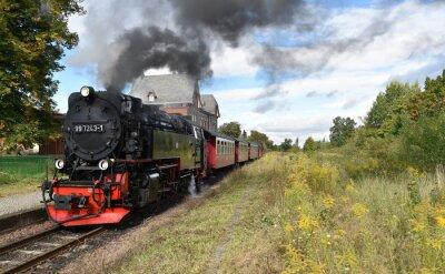 Carta da parati Selketalbahn