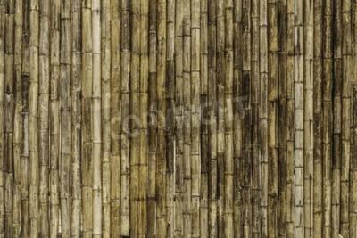 Carta da parati Sfondo di recinzione di bambù