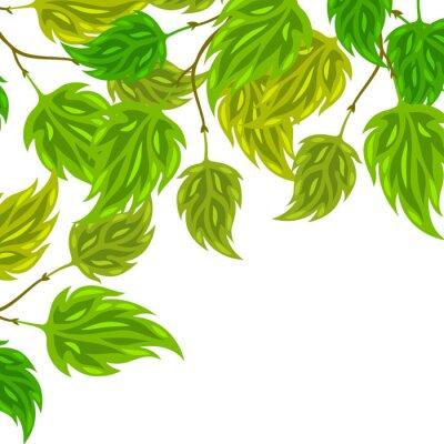 Carta da parati Sfondo di verde stilizzato lascia per biglietti di auguri