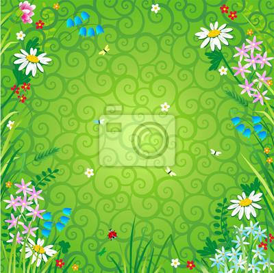 Sfondo Floreale Con Fiori Di Campo E Sfondo Verde Swirly Carta Da