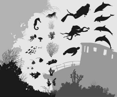 Carta da parati sott'acqua