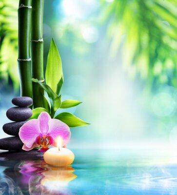 Carta da parati Spa still life - candela e pietra con bambù in natura su acqua