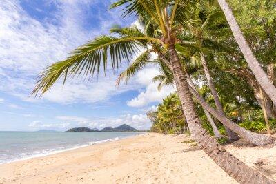 Carta da parati Spiaggia caraibica