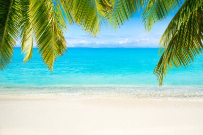 Carta da parati Spiaggia con il mare come sfondo