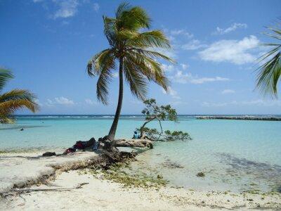 Carta da parati Spiaggia di Caraibi