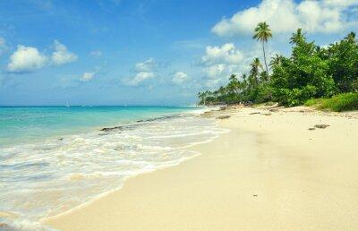 Carta da parati spiaggia di sabbia tropicale nel mare dei Caraibi, Repubblica Dominicana. Estate paradiso spiaggia. Beach Island con acqua di mare blu. la schiuma di mare sulla spiaggia. Paradiso di spiaggia del mare