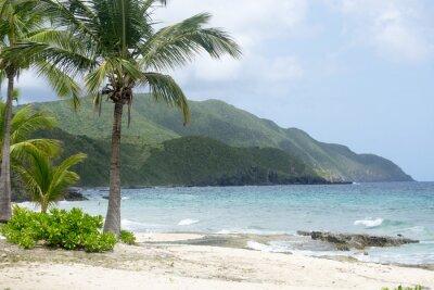 Carta da parati Spiaggia e Montagne a St. Croix