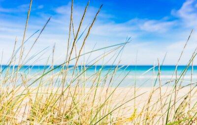 Carta da parati spiaggia idilliaca pausa