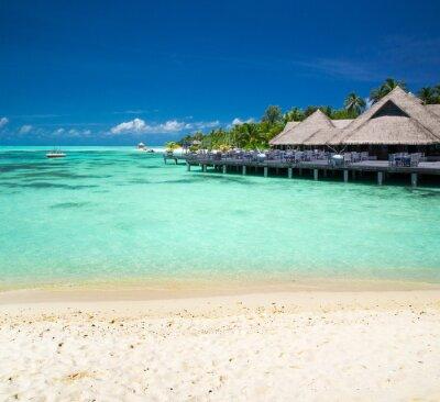 Carta da parati spiaggia tropicale in Maldive