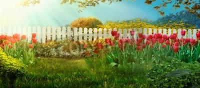 Carta da parati Spring garden. Red tulips in garden Spring grass with flowers