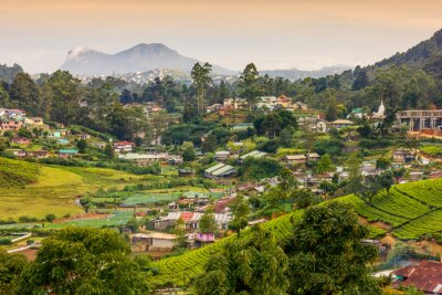 Carta da parati Sri Lanka