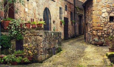Carta da parati Stradina di medievale antica tufo città Sorano con piante verdi e ciottoli, Viaggi Italia sfondo