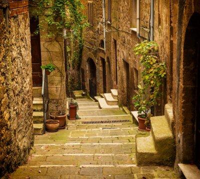 Carta da parati Stradina di tufo città medievale di Pitigliano con piante verdi e scale di ciottoli, Viaggi Italia sfondo d'epoca