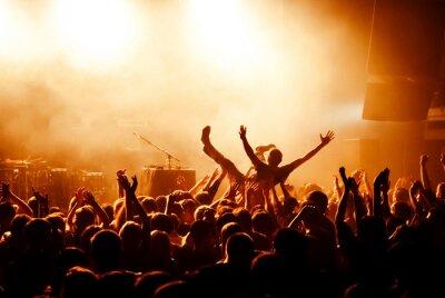 Carta da parati surf folla durante al concerto