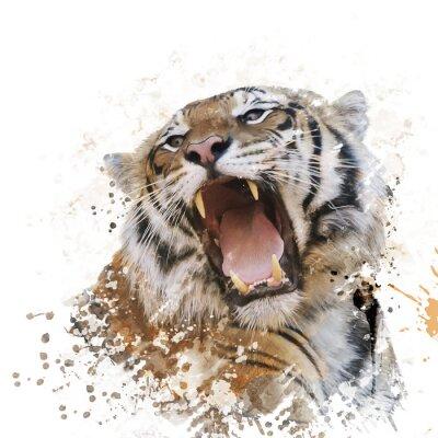 Carta da parati Tiger ritratto ad acquerello