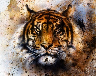 Carta da parati tigre collage sul colore di sfondo astratto, struttura la ruggine, gli animali della fauna selvatica, il contatto visivo.