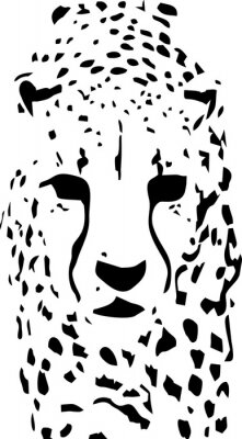 Carta da parati tigre pop art in bianco e nero