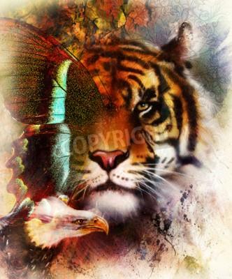 Carta da parati tigre ritratto con ali d'aquila e farfalla .. colore di sfondo astratto e ornamento, la struttura d'epoca. concetto di Animal