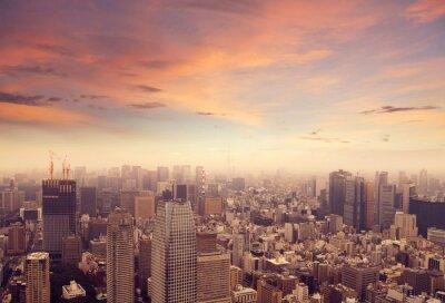 Carta da parati Tokyo Skyline