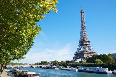 Carta da parati Torre Eiffel e Senna vista fiume con i rami degli alberi verdi, sole