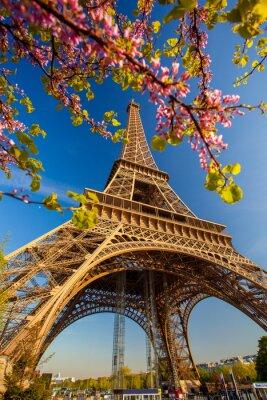 Carta da parati Torre Eiffel in primavera a Parigi, Francia