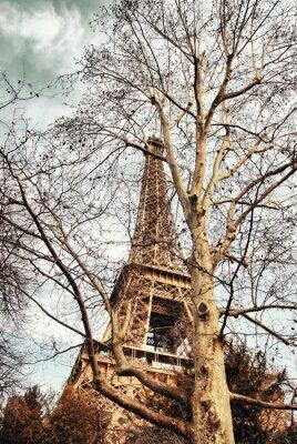 Carta da parati Torre Eiffel nascosta tra gli alberi.
