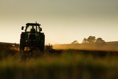 Carta da parati Tractor in sunset plowing the field