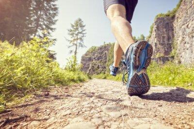Carta da parati trail sano