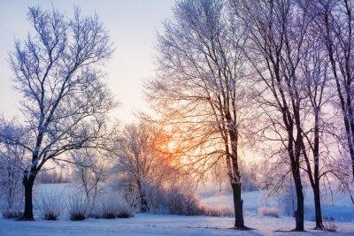 Carta da parati tramonto invernale