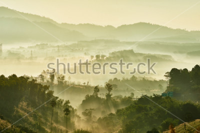 Carta da parati Tropical nature landscape mountains forest with slightly fog in morning and sunlight, Thailand.