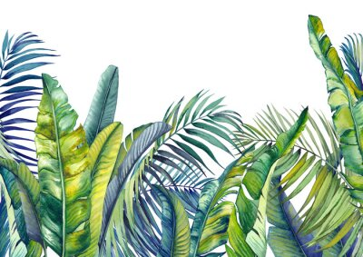 Carta da parati Tropical palm and banana leaves. Jungle wallpaper. Isolated watercolor background.
