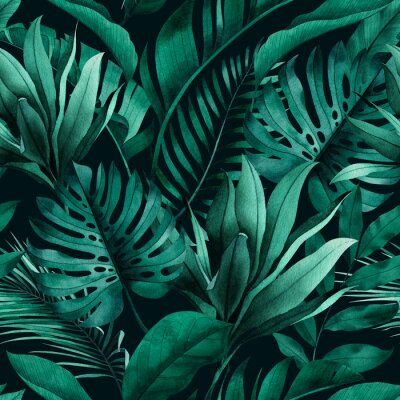 Carta da parati Tropical seamless pattern with exotic monstera, banana and palm leaves on dark background.