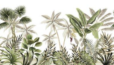 Carta da parati Tropical vintage botanical landscape, palm tree, banana tree, plant floral seamless border white background. Exotic green jungle wallpaper.