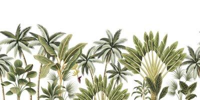 Carta da parati Tropical vintage botanical palm trees, banana tree floral seamless border white background. Exotic jungle wallpaper.