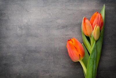 Carta da parati Tulipani, arancione sullo sfondo grigio.
