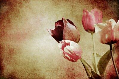 Carta da parati tulipani colorati strutturato