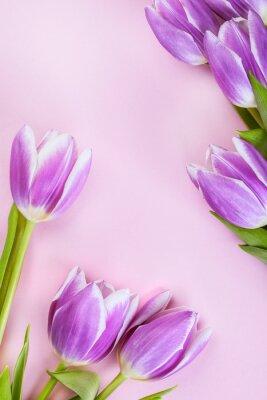 Carta da parati Tulipani viola su sfondo rosa