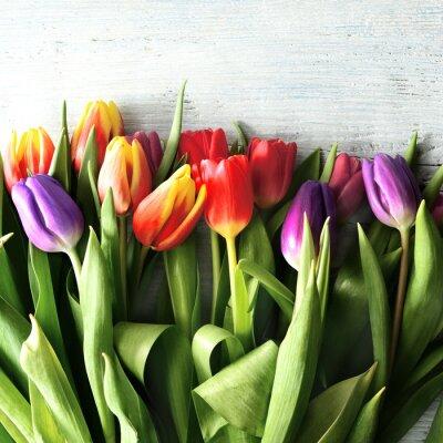 Carta da parati tulipany