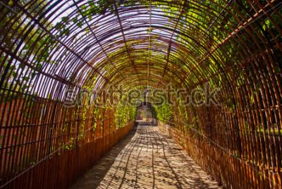 Carta da parati Tunnel di legno di bambù in un parco