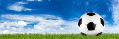 Carta da parati Un'ampia pallone da calcio retrò su erba bandiera di fronte al blu cielo nuvoloso