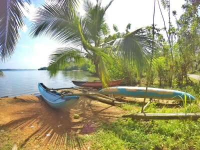 Carta da parati Un catamarano blu si trova su una bella spiaggia, sull'isola tropicale di Sri Lanka