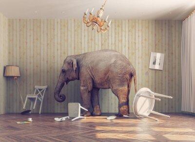 Carta da parati un elefante in una stanza