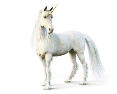 Carta da parati Unicorno maestoso che posa su un fondo isolato bianco. Rendering 3D