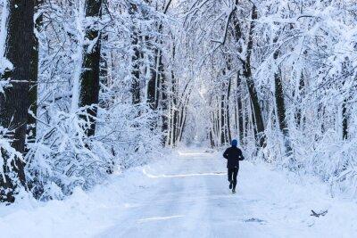 Carta da parati Uomo che corre nel bosco in inverno