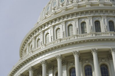 Carta da parati US Capitol cupola