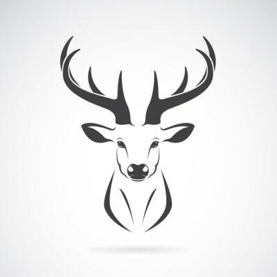 Carta da parati Vector immagine di un disegno della testa di cervo su sfondo bianco